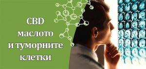 CBD маслото и туморните клетки