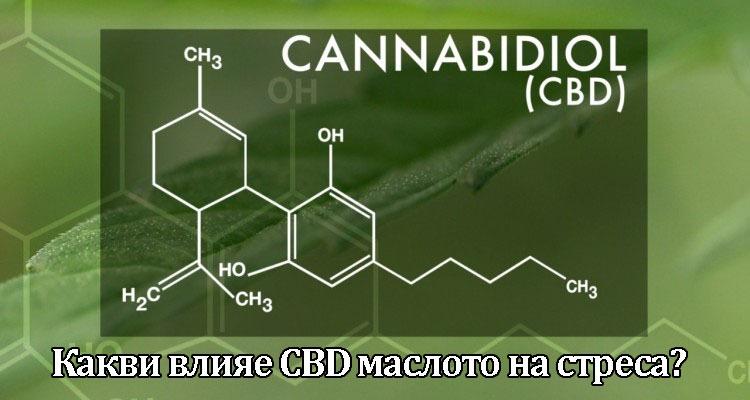 Какви влияе CBD маслото на стреса
