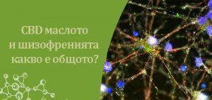 CBD маслото и шизофренията