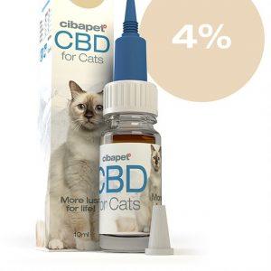 cats 4% cbd