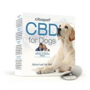 cbd pastilles